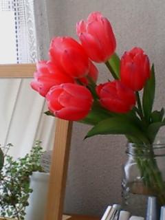 春の香りがしてきた。